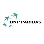 Client Interactive Conseil, BNP Paribas