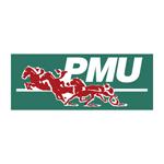 Client Interactive Conseil, PMU